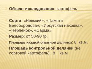 Объект исследования: картофель Сорта: «Невский», «Памяти Белобородова», «Ирку