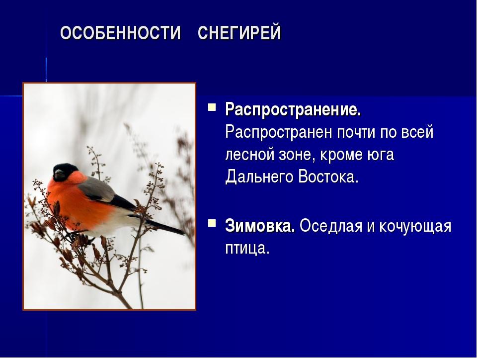 ОСОБЕННОСТИ СНЕГИРЕЙ Распространение. Распространен почти по всей лесной зоне...