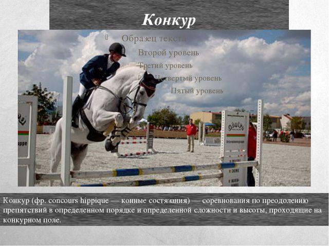 Конкур Конкур (фр. concours hippique — конные состязания) — соревнования по п...