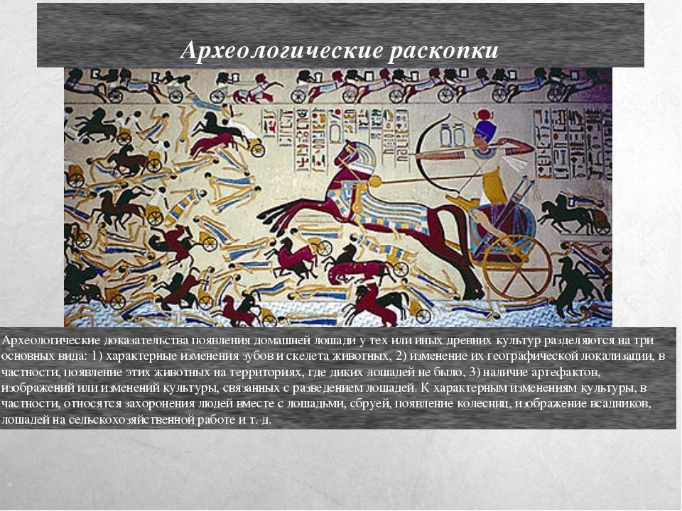 Археологические раскопки Археологические доказательства появления домашней ло...