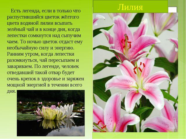 Лилия Есть легенда, если в только что распустившийся цветок жёлтого цвета вод...