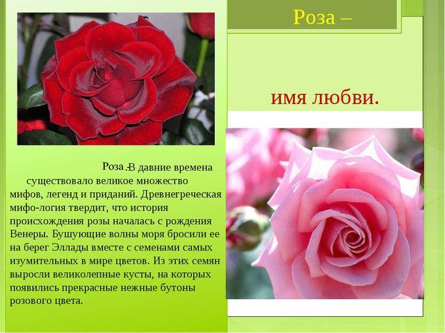 Роза – имя любви. .В давние времена существовало великое множество мифов, ле...