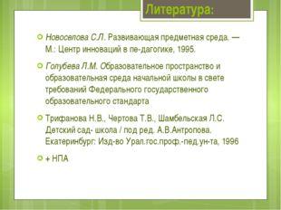 Новоселова С.Л. Развивающая предметная среда. — М.: Центр инноваций в педаг