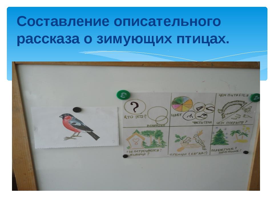 Составление описательного рассказа о зимующих птицах.