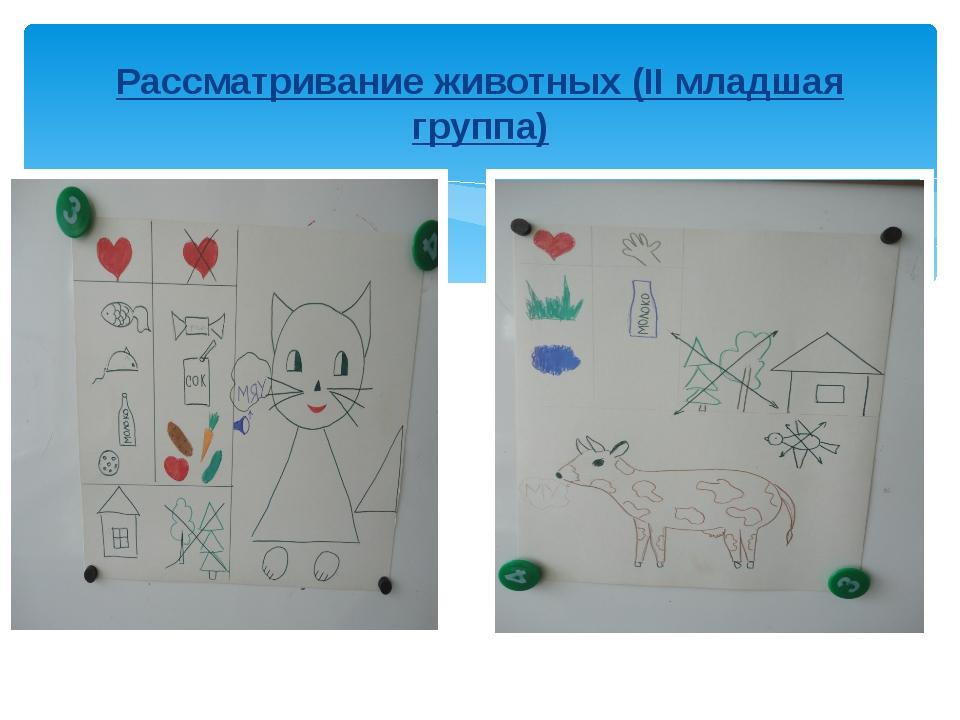 Рассматривание животных (II младшая группа)