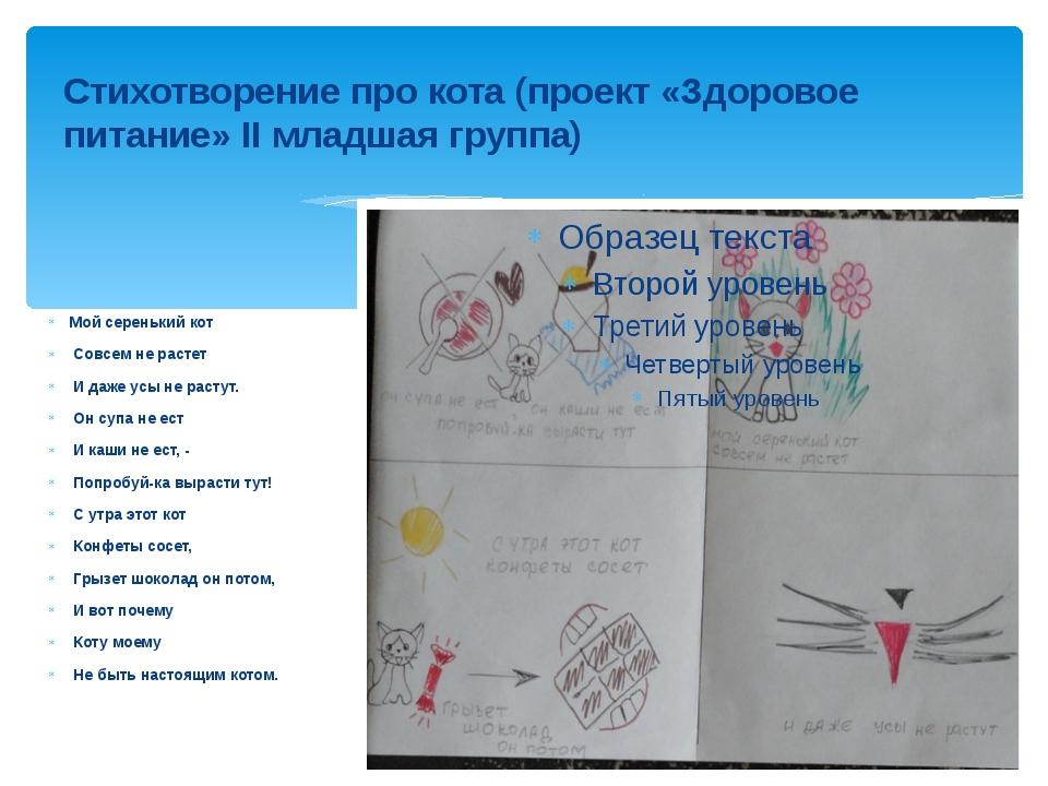 Стихотворение про кота (проект «Здоровое питание» II младшая группа) Мой сере...