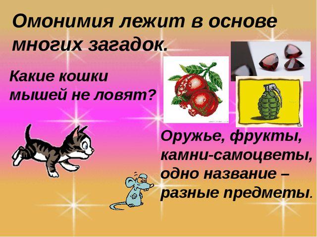 Омонимия лежит в основе многих загадок. Какие кошки мышей не ловят? Оружье, ф...