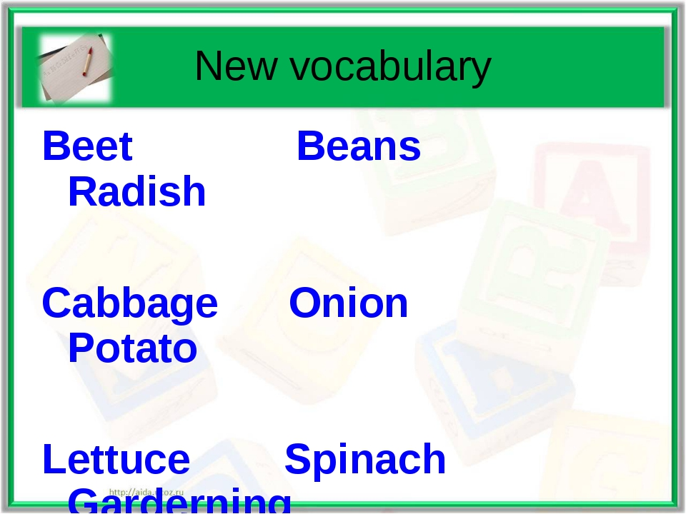 New vocabulary Beet Beans Radish Cabbage Onion Potato Lettuce Spinach Gardern...