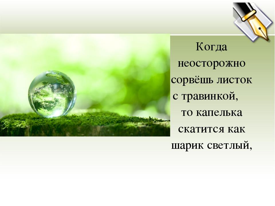 Когда неосторожно сорвёшь листок с травинкой, то капелька скатится как шарик...