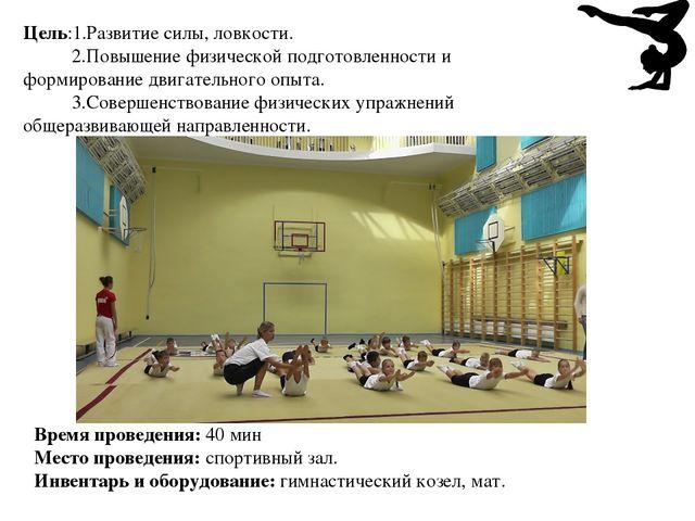 Цель:1.Развитие силы, ловкости. 2.Повышение физической подготовленности и фор...