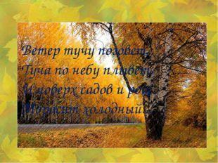 Ветер тучу позовет, Туча по небу плывет. И поверх садов и рощ Моросит холодны
