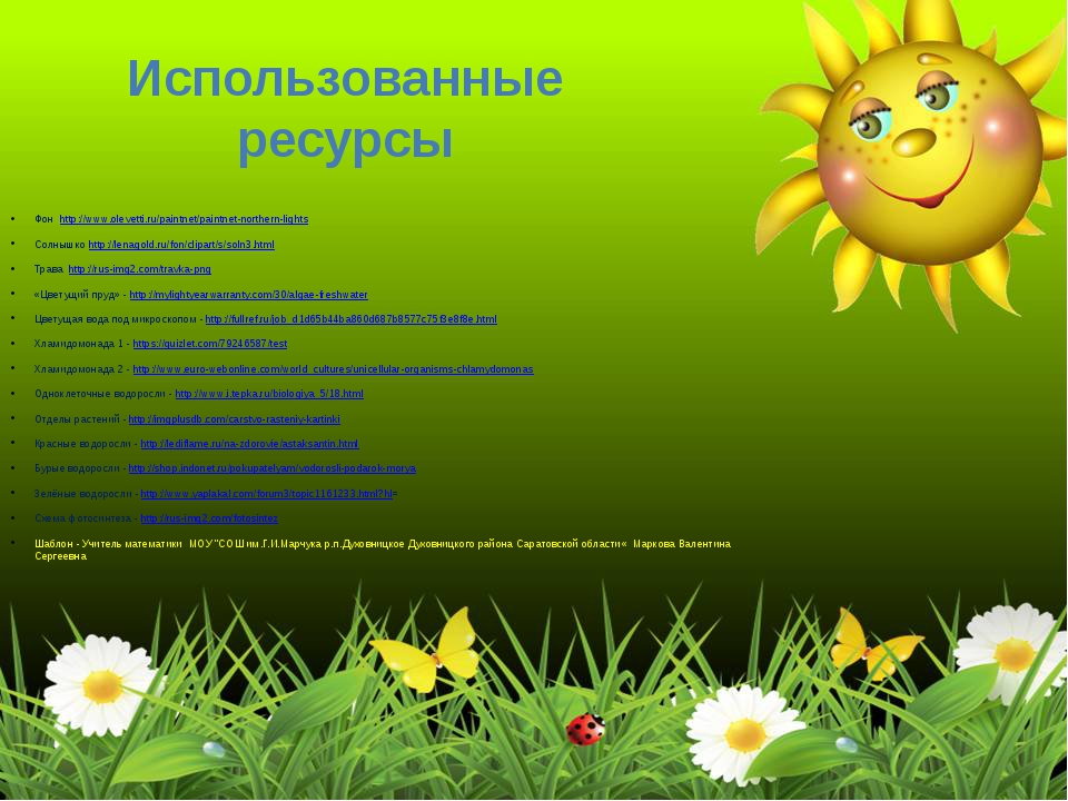 Использованные ресурсы Фон http://www.olevetti.ru/paintnet/paintnet-northern-...