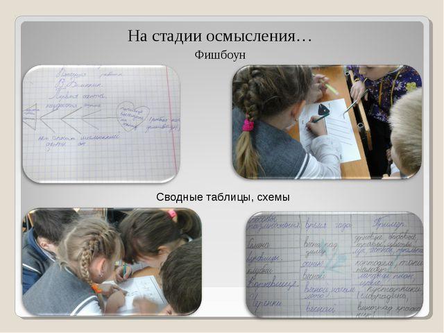 На стадии осмысления… Фишбоун Сводные таблицы, схемы