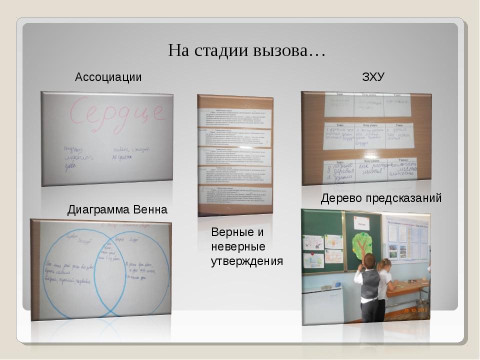 На стадии вызова… Ассоциации Диаграмма Венна Дерево предсказаний ЗХУ Верные...