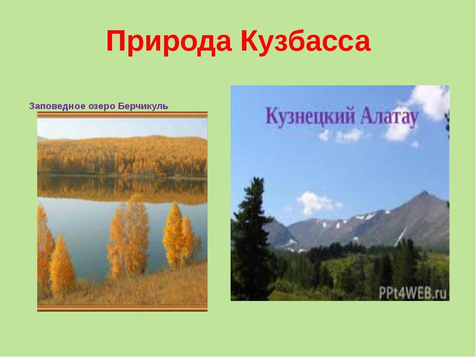 Природа Кузбасса Заповедное озеро Берчикуль