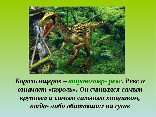 Король ящеров – тиранозавр- рекс. Рекс и означает «король». Он считался самым...