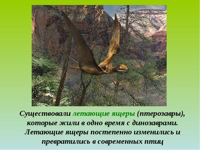 Существовали летающие ящеры (птерозавры), которые жили в одно время с динозав...