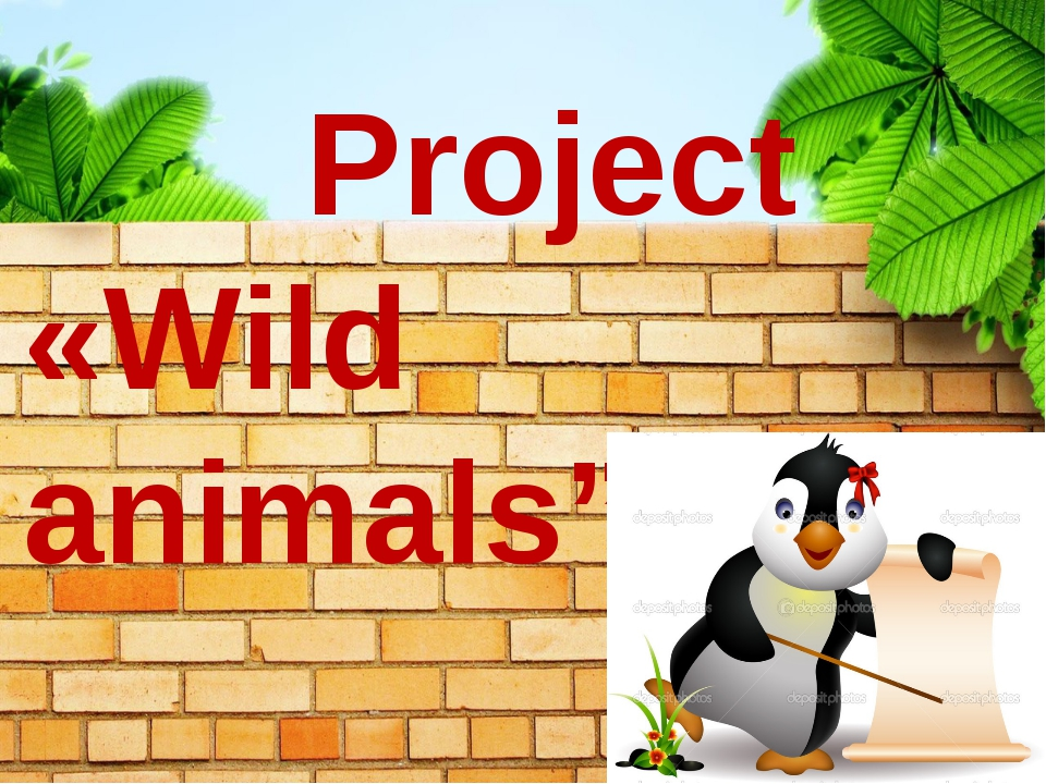 Project «Wild animals""