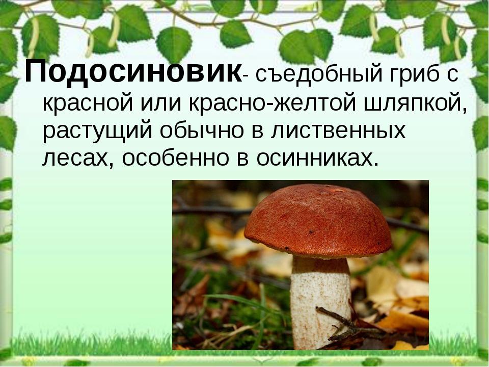 Подосиновик- съедобныйгрибс красной или красно-желтой шляпкой, растущийобы...