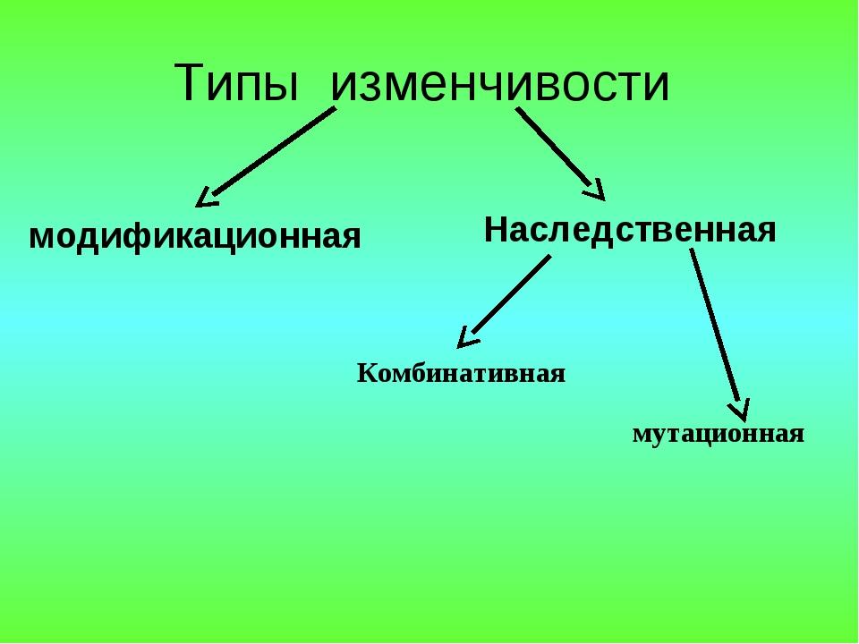 Типы изменчивости Наследственная модификационная мутационная Комбинативная