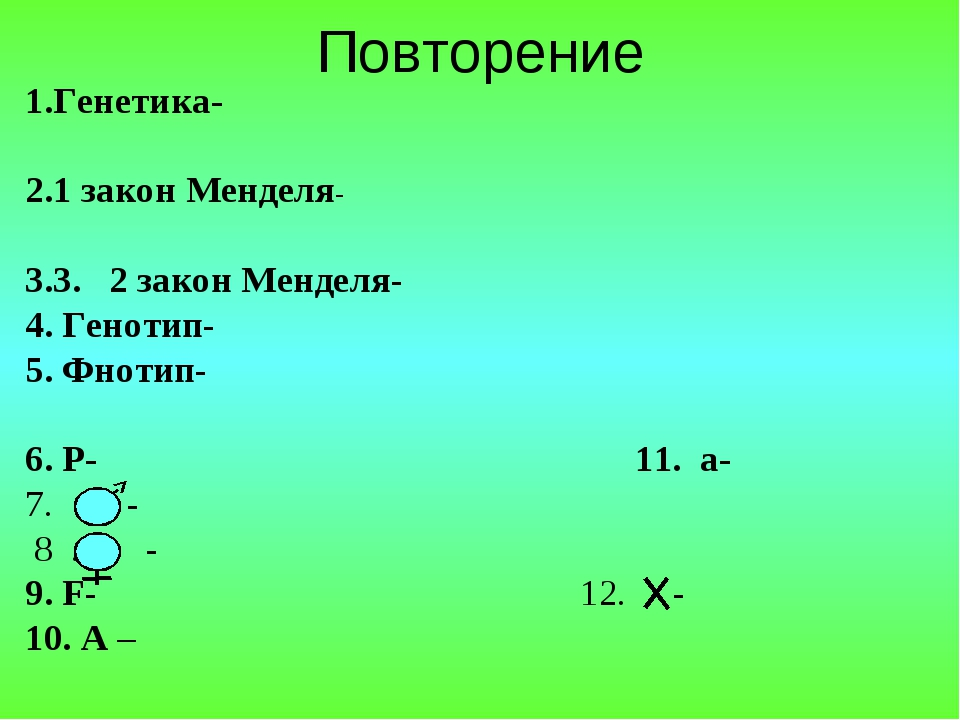 Повторение 1.Генетика- 1 закон Менделя- 3. 2 закон Менделя- 4. Генотип- 5. Фн...