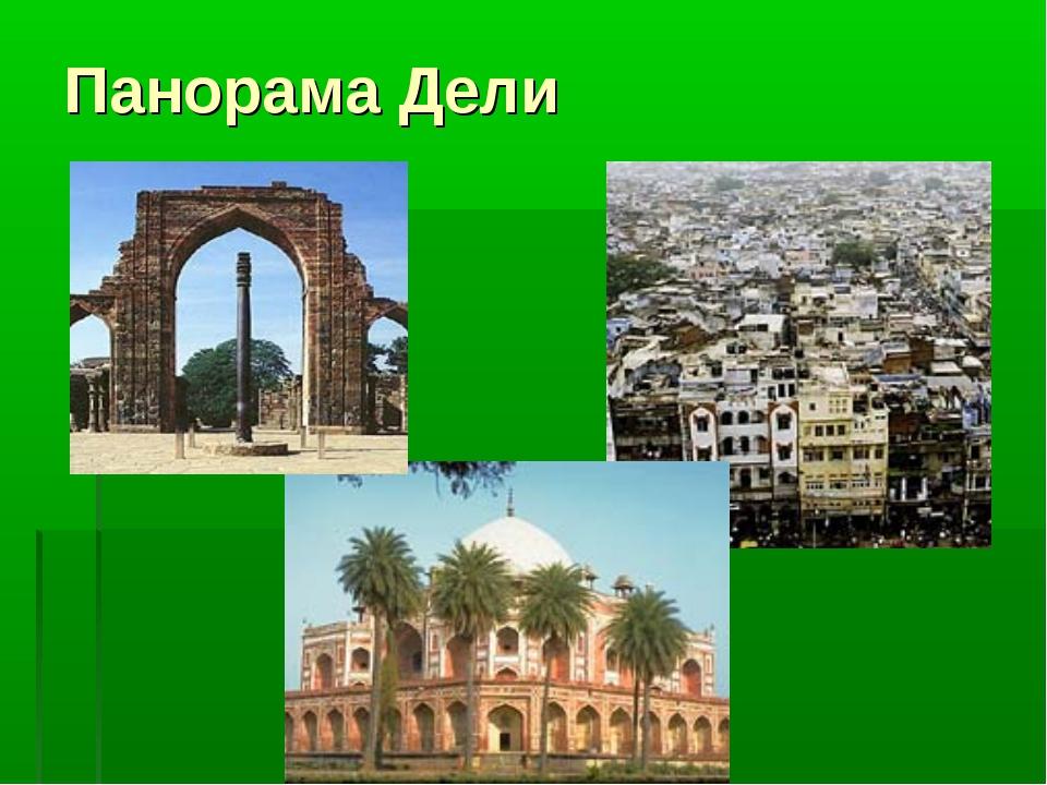 Панорама Дели