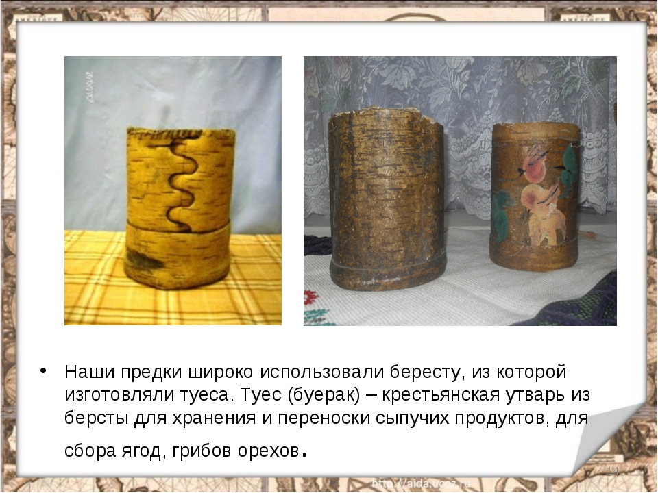 Наши предки широко использовали бересту, из которой изготовляли туеса. Туес (...