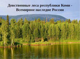 Девственные леса республики Коми - Всемирное наследие России