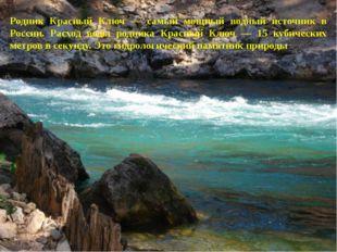 Родник Красный Ключ — самый мощный водный источник в России. Расход воды родн