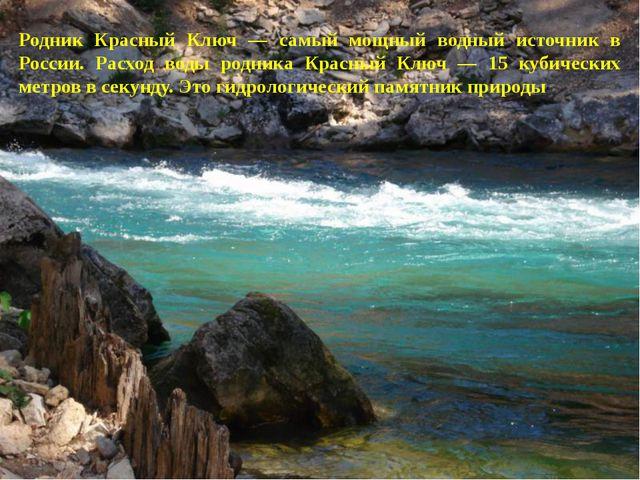 Родник Красный Ключ — самый мощный водный источник в России. Расход воды родн...