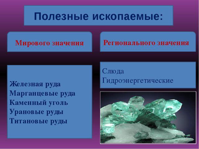 Полезные ископаемые: Мирового значения Регионального значения Железная руда...