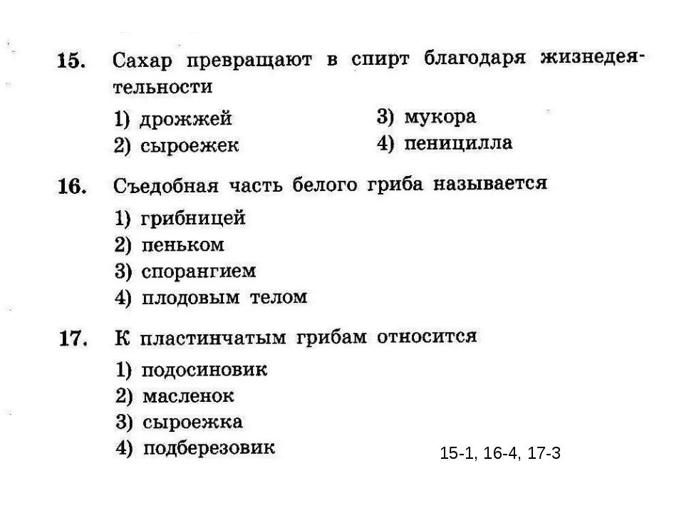 15-1, 16-4, 17-3