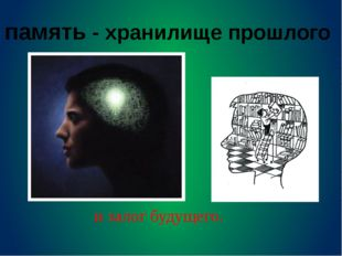 Память, её виды и законы Мгновенная память Кратковременная память Оперативная