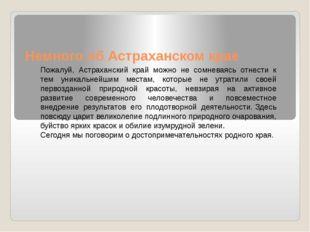 Немного об Астраханском крае Пожалуй, Астраханский край можно не сомневаясь о
