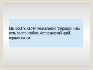 Мы богаты своей уникальной природой, нам есть за что любить Астраханский кра