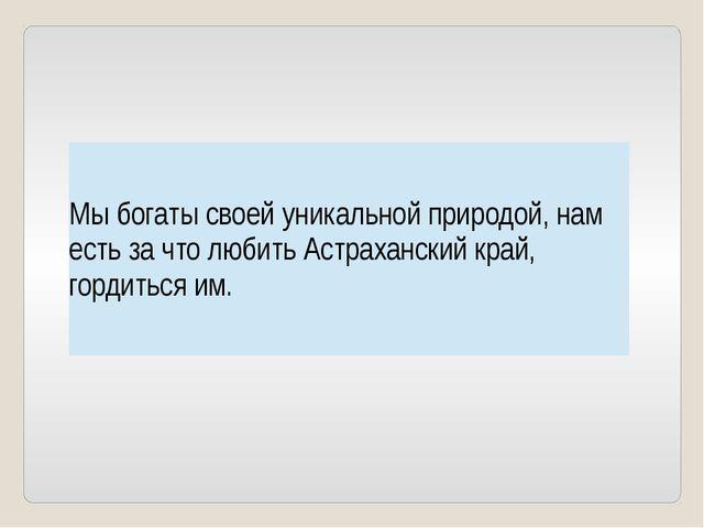 Мы богаты своей уникальной природой, нам есть за что любить Астраханский кра...