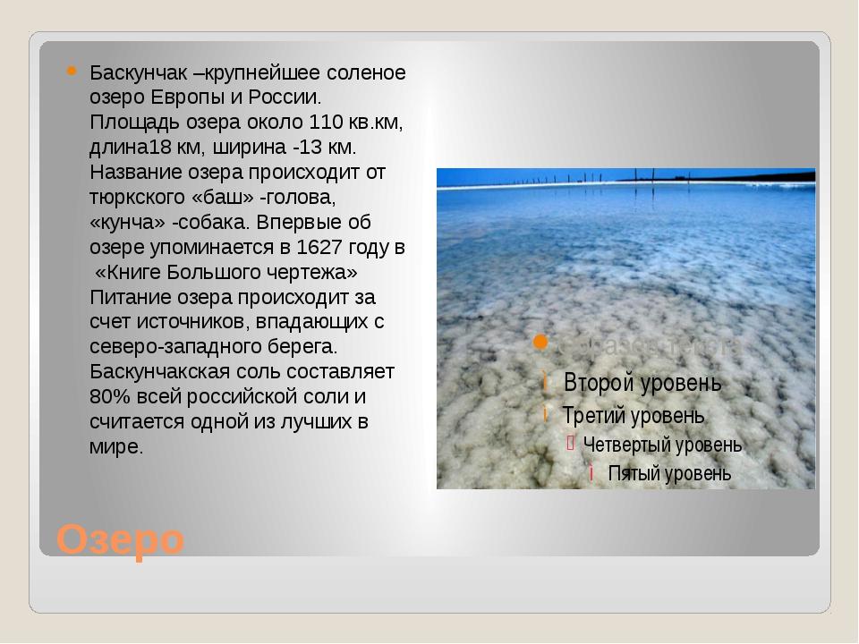 Озеро Баскунчак –крупнейшее соленое озеро Европы и России. Площадь озера окол...