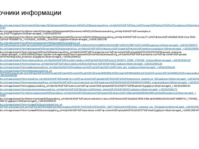 Источники информации https://yandex.ru/images/search?text=типы%20ротовых%20ап...