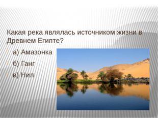 Какая река являлась источником жизни в Древнем Египте? а) Амазонка б) Ганг в