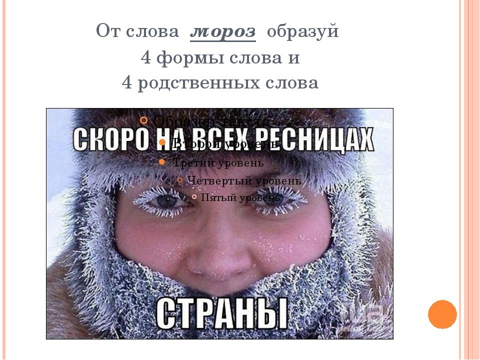От слова мороз образуй 4 формы слова и 4 родственных слова