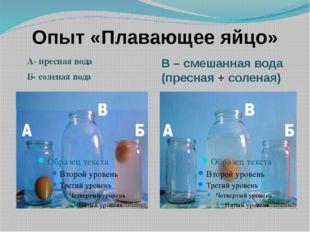 Опыт «Плавающее яйцо» А- пресная вода Б- соленая вода В – смешанная вода (пре
