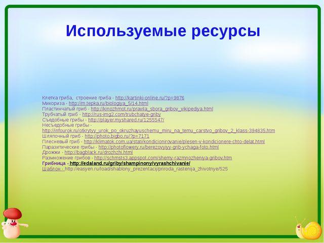 Используемые ресурсы Клетка гриба, строение гриба - http://kartinki-online.ru...