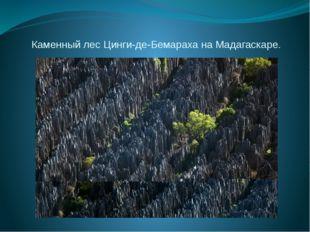 Каменный лес Цинги-де-Бемараха на Мадагаскаре.