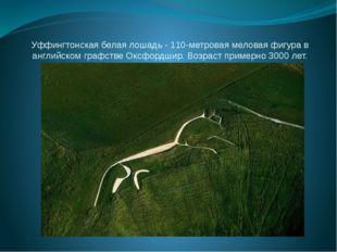 Уффингтонская белая лошадь - 110-метровая меловая фигура в английском графств
