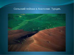 Сельский пейзаж в Анатолии. Турция.