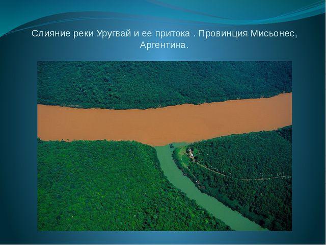 Слияние реки Уругвай и ее притока . Провинция Мисьонес, Аргентина.