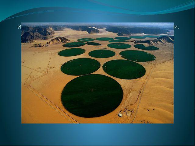 """Ирригационные круги или """"карусели орошения"""" в Иордании."""