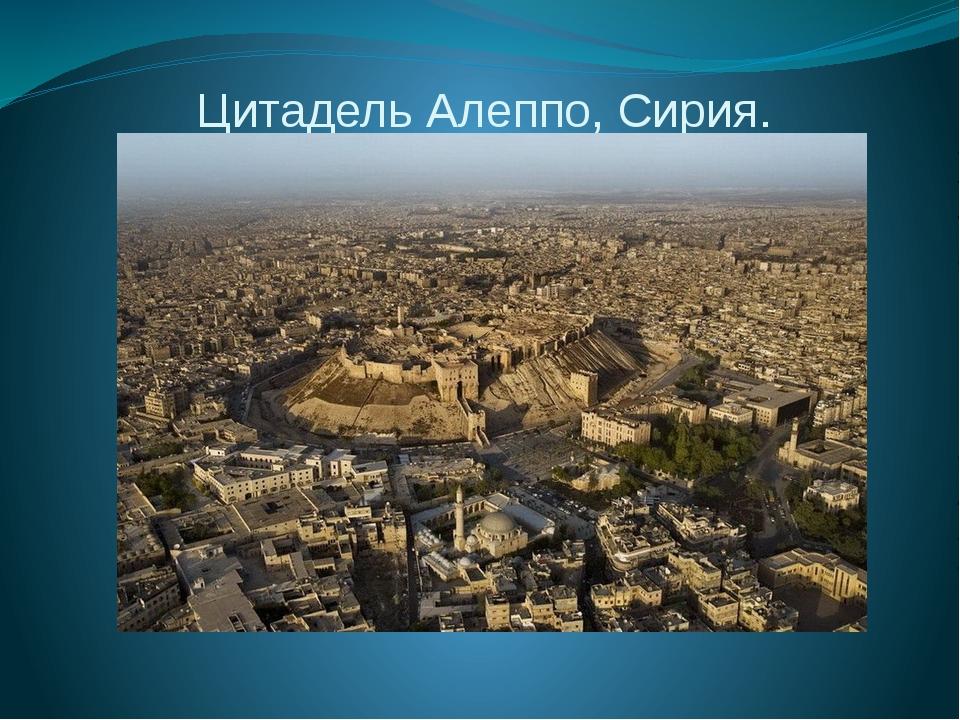 Цитадель Алеппо, Сирия.