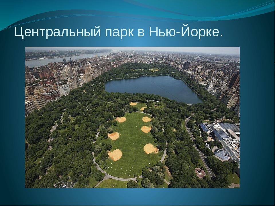 Центральный парк в Нью-Йорке.
