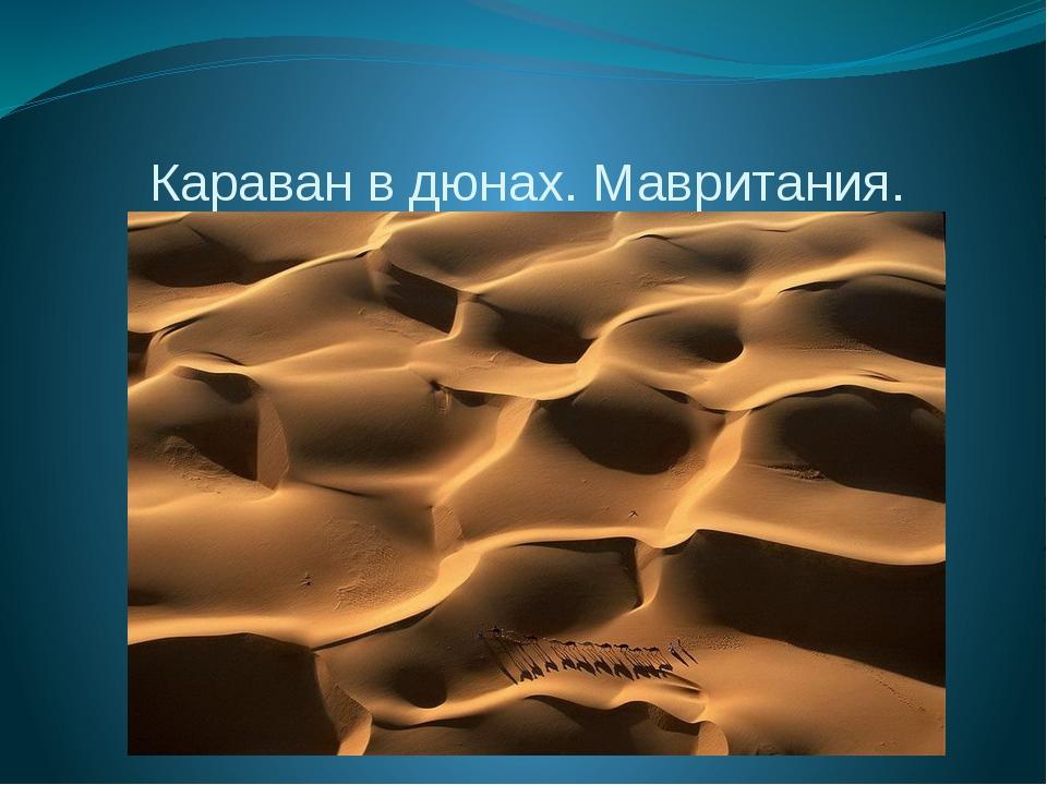 Караван в дюнах. Мавритания.